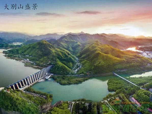 河南喜迎千亿大高铁7.jpg